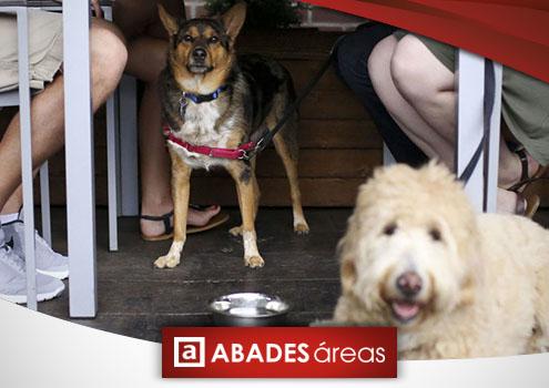 Perros en un área de servicio