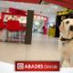 Perro en área de servicio Abades Áreas